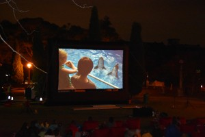 Festival of Mosman - Moonlight Movie and Music - Dolphin Tale